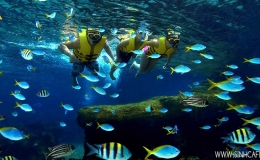 Glass bottom boat trip on Nha Trang Bay