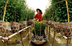 Vietnam highlighs 09 Days