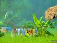 Mai Chau - Hoa Binh 02 Jours