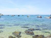 Découverte de l'île de Cham-demi-journée