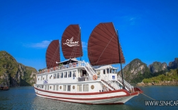 Lavender Cruise 2 Days