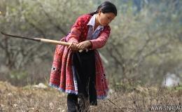 Mai Chau trekking 03 Days