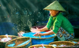 Myanmar - Vietnam - Cambodia 13 Days