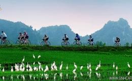 Hoa Lu - Tam Coc 01 Day