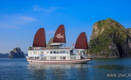 Lavender Cruise 3 Days